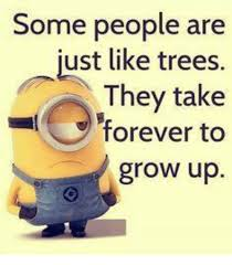 Grow Up Meme - some people are ust like trees they take forever to grow up