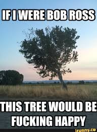 Fucking Funny Memes - 28 most funny tree meme photos and images of all the time