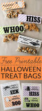 best 25 halloween goodie bags ideas only on pinterest halloween