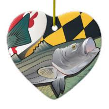 striped bass ornaments keepsake ornaments zazzle