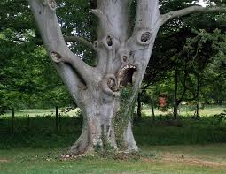 40 unique trees that definitely look like something else page 2 of 2