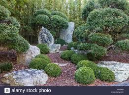 colorado u s japanese gardens bonsai rock stock photos u0026 bonsai rock stock images alamy