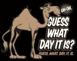 Sexy Hump Day Memes - hump day clipart