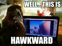 Hawkward Meme - the best hawkward memes memedroid