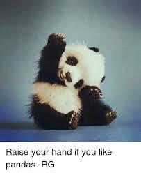Raising Hand Meme - raise your hand if you like pandas rg meme on esmemes com