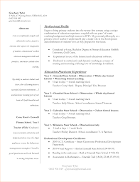 Resume Examples For University Students by Resume For First Year University Student Free Resume Example And