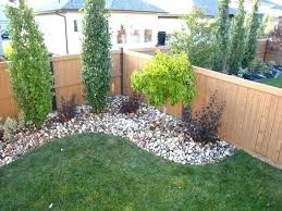 Small Backyard Landscaping Ideas For Privacy Small Garden Trees For Privacy U2013 Exhort Me