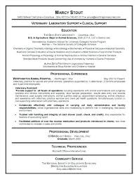 Free Australian Resume Template Sample Australian Resume Format Resume Example Electrical Engineer