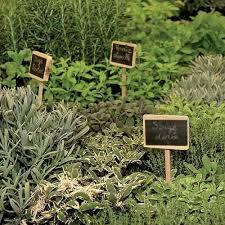 les herbes aromatiques en cuisine les herbes aromatiques bio en cuisine à marseille