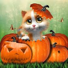 43 best cats for halloween images on pinterest 2016 halloween