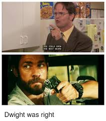 Dwight Meme - flakes you could grow the best beard dwight was right beard meme
