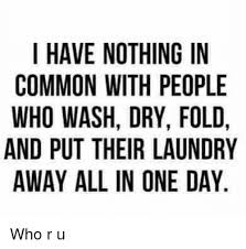 Folding Laundry Meme - i have nothing in common with people who wash dry fold and put