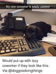 Lazy Worker Meme - my new coworker is totally useless would put up with lazy coworker