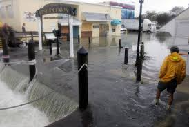 Map St Petersburg Florida by Pinellas Storm Surge App Makes Theoretical Damage Personal Tbo Com