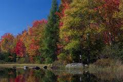 fall colors cedar falls iowa stock photo image 45932138