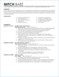 basic resume template word professional resume template microsoft word 2003 kantosanpo