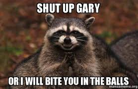 Gary Meme - shut up gary or i will bite you in the balls evil plotting raccoon