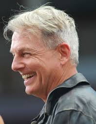 whats the gibbs haircut about in ncis 269 best ncis mark harmon images on pinterest tv series