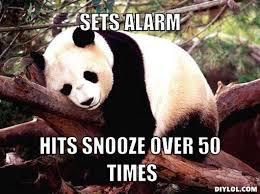 Alarm Meme - procrastination panda meme generator sets alarm hits snooze over 50