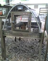 Backyard Quail Pens And Quail Housing by Quail Pens Pg 3 Backyard Chickens Com They Are 16