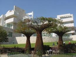 bougainvillea and steel tree sculptures by fluffy photo