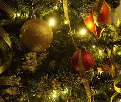 Christmas Trees Nc Ncda U0026amp Cs Offers Tips To Care For Fresh Christmas Trees