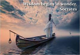 words of wisdom quotes 40 of the most wise quotations from