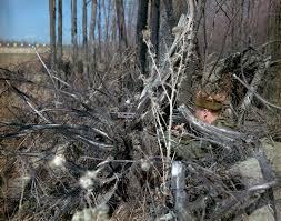 fn c1a1 sniper rifle u2013 www captainstevens com