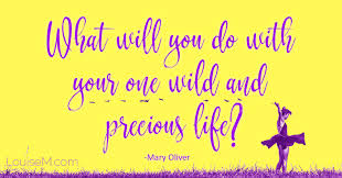 best inspirational quotes for killer social media posts