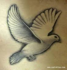 71 beautiful dove tattoos with meanings