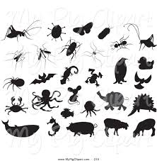 bugs black and white clipart 55