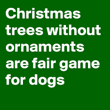 trees without ornaments are fair for dogs post by