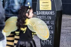 chambre d agriculture rennes rennes les apiculteurs bretons devant la chambre d agriculture