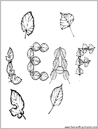 autumn leaves coloring pages free printable colouring pages for