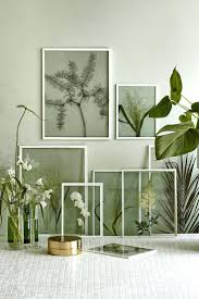wall ideas wall plant decor dried plant wall decor hanging