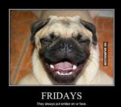 Funny Friday Meme - funny dog face on friday meme bajiroo com