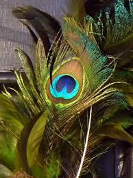 peacock feather wreath hgtv