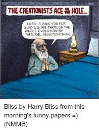 2017 harry bliss distributed by tribune content agency llcai rights