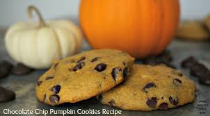 the best chocolate chip pumpkin cookies recipe