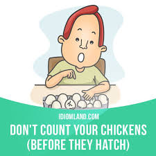 Never Count Your Chicken Before They Hatch 105 Best Idioms Images On Idioms