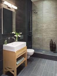 Small Basement Bathroom Designs Basement Bathroom Traditional Basement Dc Metro By Nvs