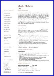 Resume Bio Examples by Chef Bio Examples Bio Examples