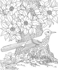 print pages color adults 42 coloring pages kids