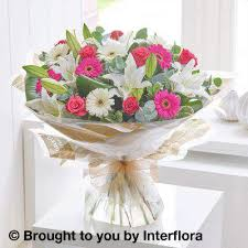 sunday flower delivery and germini large flower delivery liverpool
