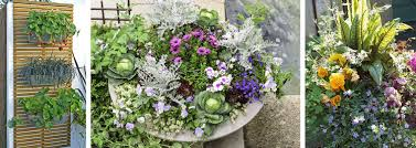 edibles flowers how to include edibles in your landscape container gardens