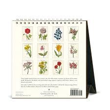 cavallini calendars cavallini papers 2016 desk calendar botanica 6 x 6 5 eco paper