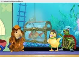 pets images save baby golden fish wallpaper