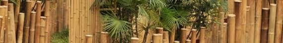 raumtrenner falttr bambus wissenswertes über bambus produkte