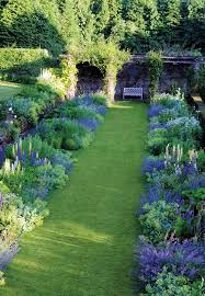 best 25 green garden ideas on pinterest garden privacy privacy