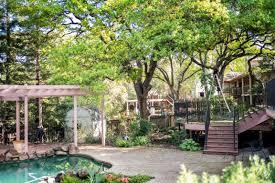 pruning trees by pool trellis sacramento u0027s best tree care arborist
